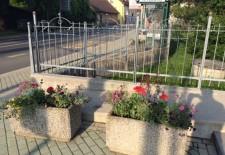 zasadili rože_šentjernej