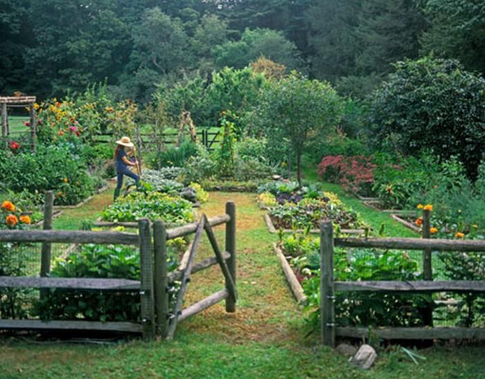 Top 10 idej za ureditev vrta 2