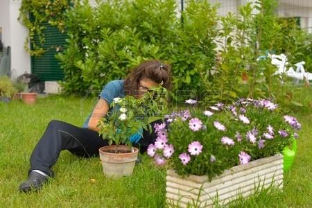 Top 10 idej za ureditev vrta