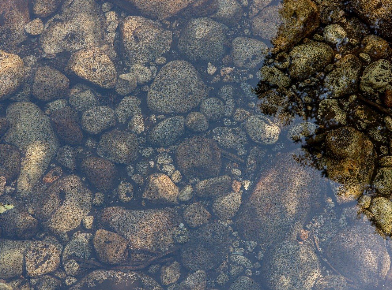 ribnik 3